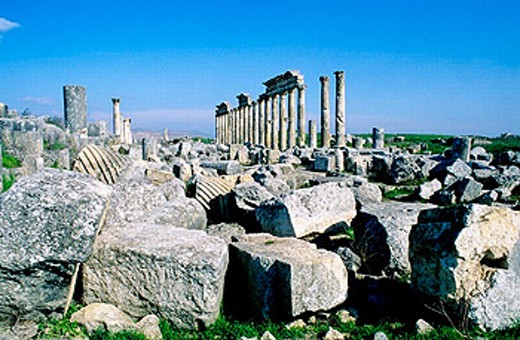Ruins of the ancient roman city of Apamee. Syria : Stock Photo