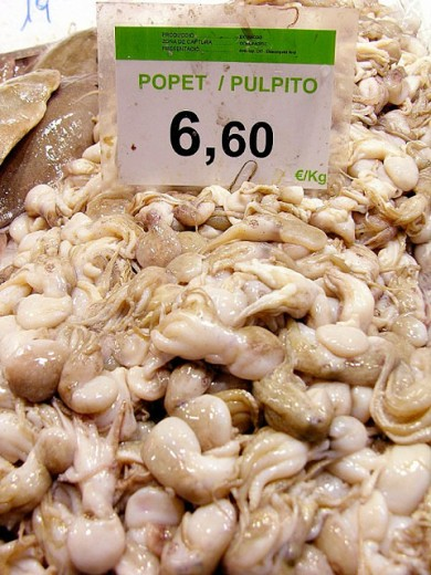 Small octopus for sale in la Boqueria Market. Barcelona. Spain. : Stock Photo
