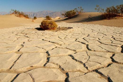 Cracked mud, Stovepipe Wells. Death Valley National Park. Inyo county. California. USA : Stock Photo