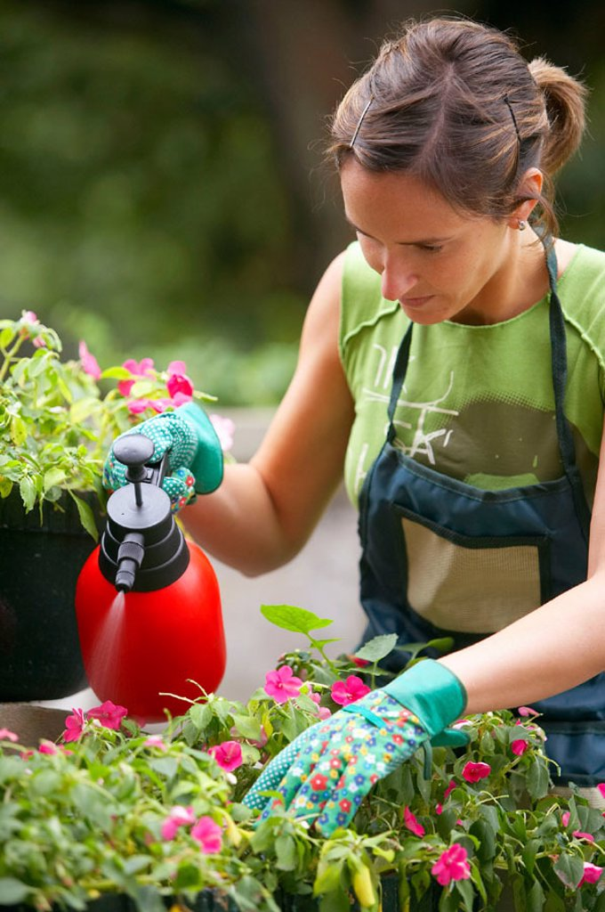 Woman spraying flowers in garden : Stock Photo