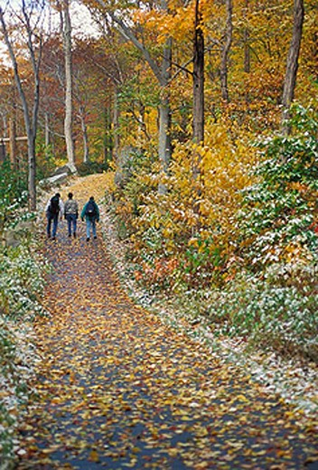 Stock Photo: 1566-255907 Franconia Notch State Park, New Hampshire USA