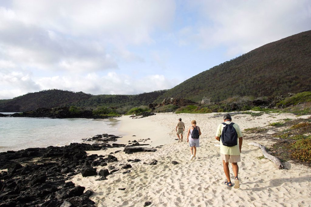 Floreana island, Galapagos Islands. Ecuador : Stock Photo