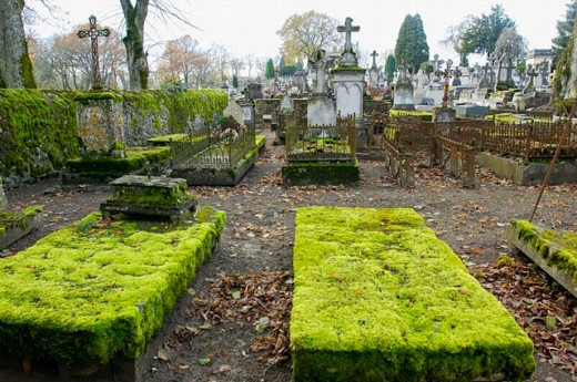 Stock Photo: 1566-261461 Cemetery in fall, Saulieu. Burgundy, France