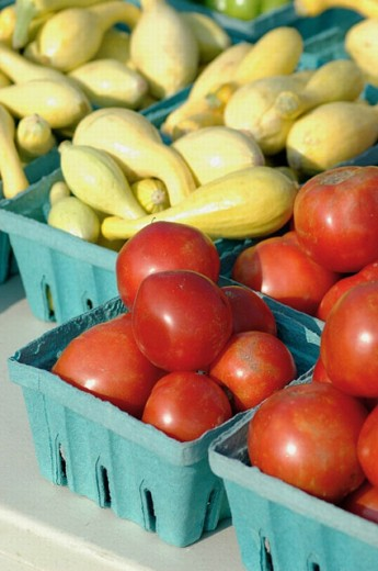 Stock Photo: 1566-262171 Tomatoes Green and red and cherry and Corn and squash and peppers at Farmers Market my Master Gardners