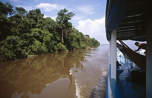Rio Negro, Amazon. Brazil, 2005 : Stock Photo