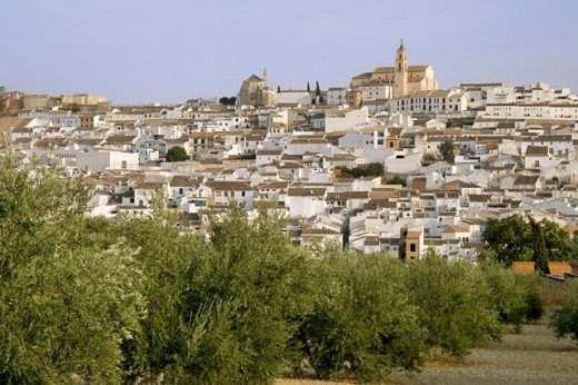Village of Baena, from where one of the best olive oil is coming. Córdoba province. Andalucia. Spain. : Stock Photo