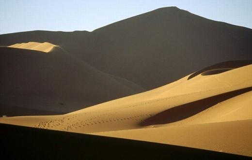 Stock Photo: 1566-269516 Deadvlei, Namib desert. Namibia