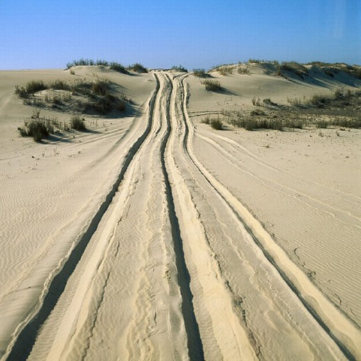 Stock Photo: 1566-270686 Dunes, Doñana National Park, Huelva province, Spain