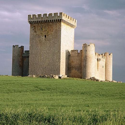 Stock Photo: 1566-276884 Castle (15th century), Villalonso. Zamora province, Castilla-León, Spain
