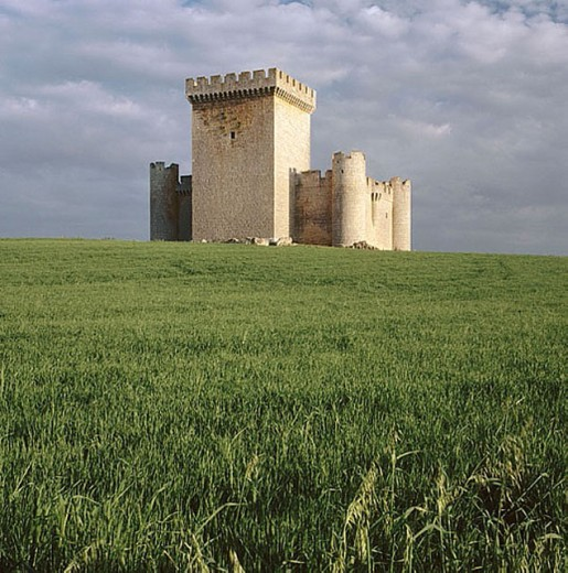 Stock Photo: 1566-276886 Castle (15th century), Villalonso. Zamora province, Castilla-León, Spain