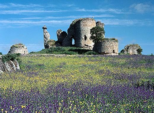Amesnal Castle ruins, Alfaraz de Sayago, Zamora province, Castile-Leon, Spain : Stock Photo
