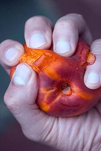 Stock Photo: 1566-285574 Hand squeezing a peach