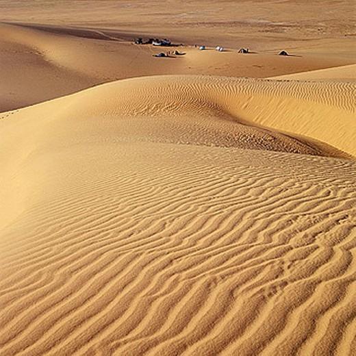 Ténéré desert. Argelia. : Stock Photo