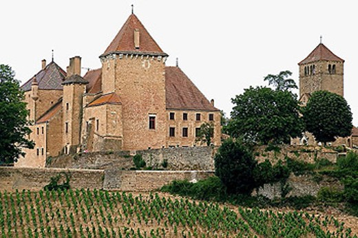 Stock Photo: 1566-293645 Vineyard and ´Pierreclos´ castle XIVth century. Mâconnais. Wine country. Burgundy. France.