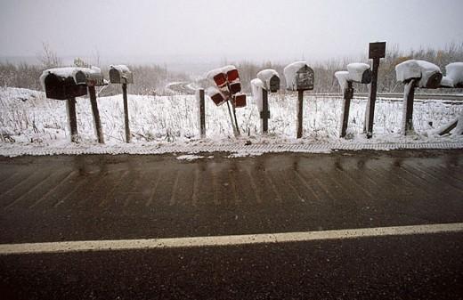 Mailbox. Denali National Park. Alaska. USA : Stock Photo