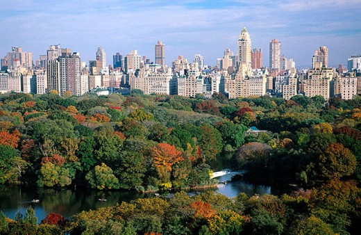 Central Park and buildings in Manhattan, New York City. USA : Stock Photo