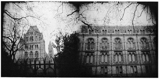 Natural History Museum, South Kensington, London. England, UK : Stock Photo