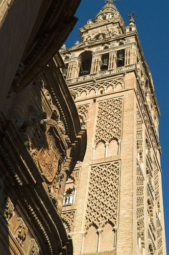 Giralda tower. Sevilla. Spain : Stock Photo