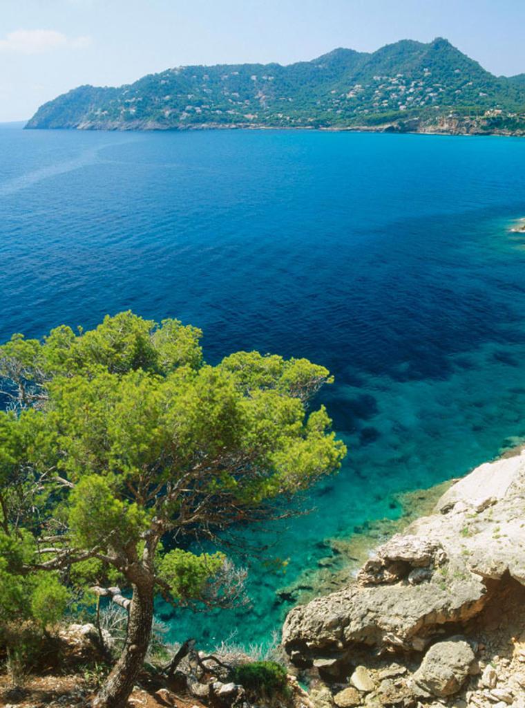 Canyamel. Artà caves. Mallorca. Balearic Islands. Spain. : Stock Photo