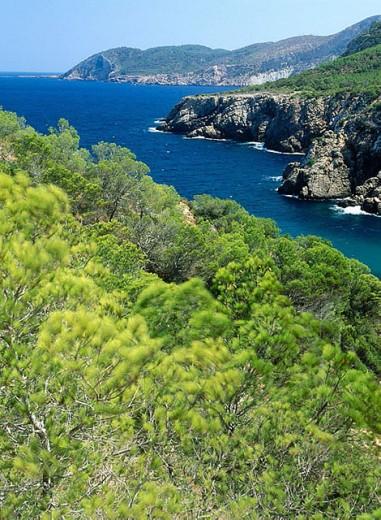 Cala d´En Serra. Ibiza. Balearic Islands. Spain. : Stock Photo
