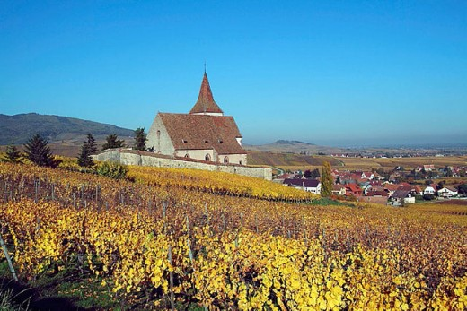 Stock Photo: 1566-311871 Hunawihr. Alsatian Wine Road. France