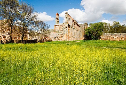 Stock Photo: 1566-312199 Ruins of Santa Maria de Moreruela Cistercian monastery (12th century). Zamora province, Castilla-León, Spain