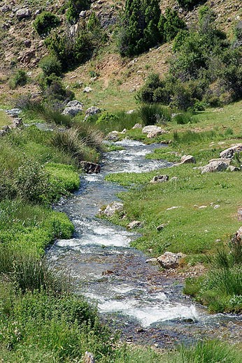 Stock Photo: 1566-318924 Sources of Arcos river, Arcos de las Salinas. Teruel province, Aragón, Spain