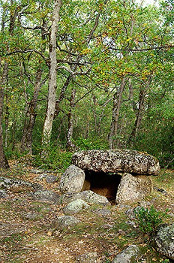 Cornudella dolmen. Bosque de Transás. Pirineo Aragonés. Huesca province. Spain. : Stock Photo