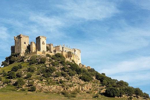 Castle of Almodóvar del Río. Córdoba province, Andalusia. Spain : Stock Photo