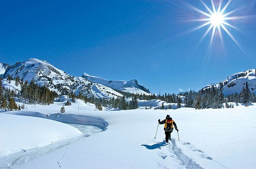 Backcountry skier in fresh snow along frozen Lee Vining Creek, Inyo National Forest, Sierra Nevada Mountains, California : Stock Photo