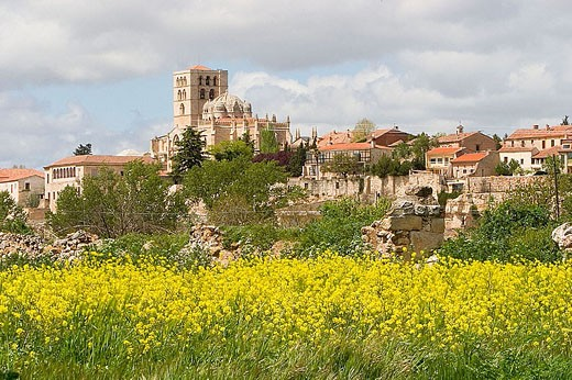 Zamora Romanesque cathedral (S. XII), Via de la Plata, Zamora province, Castilla y León, Spain : Stock Photo