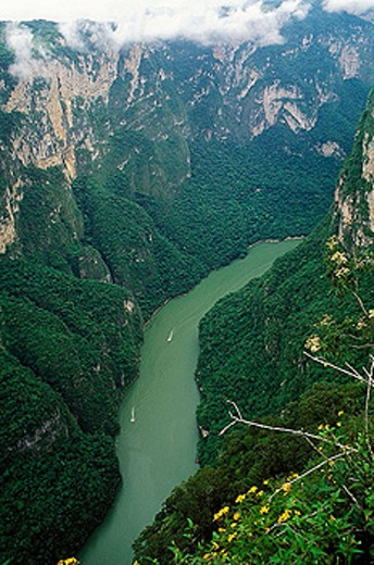 Cañón del Sumidero. Grijalva river opened it. National Park with seasonal falls, archaeological sites, caves, vegetation and wildlife. There was a big impact when they built Chicoasen dam because of polution. : Stock Photo