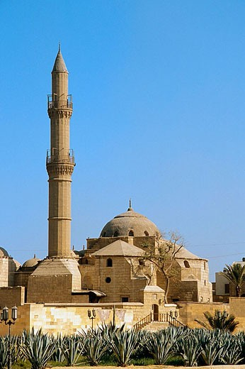 Citadel, Suleiman Pasha Mosque. Cairo. Egypt : Stock Photo