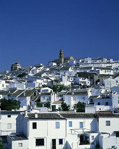 Stock Photo: 1566-340503 Baena village, Andalusia, Spain.