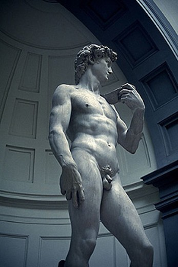 Michelangelo´s david, Accademia di bellearti, Florence, Tuscany, Italy. : Stock Photo