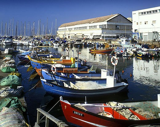 Stock Photo: 1566-341784 Fishing boats, Old port, Jaffa, Israel.