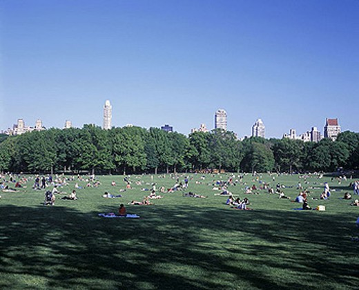 Stock Photo: 1566-342535 Sunbathers, Sheep meadow, Central park, Manhattan, New York, USA.