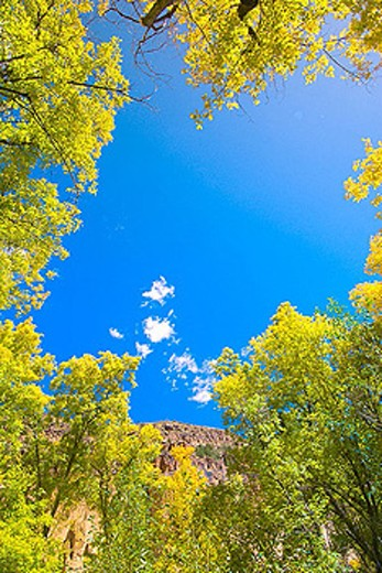 Bandelier National Monument (archaeological site), Los Alamos, New Mexico, USA. : Stock Photo