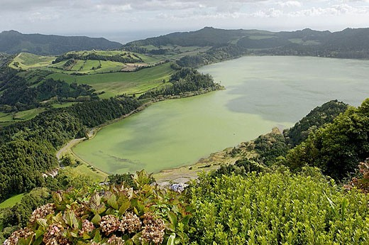Furnas lake. São Miguel Island. Azores. Portugal : Stock Photo