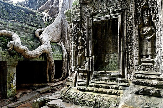 Ta Prohm temple, mid XIIth century, early XIIIth century AD. Buddhist. Temples of Angkor. Siem Reap area. Kingdom of Cambodia. : Stock Photo