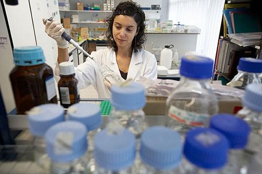 Laboratory, Fundación Inbiomed, Genetrix Group. Center for research in stem cells and regenerative medicine. Donostia, San Sebastian, Euskadi. Spain. : Stock Photo