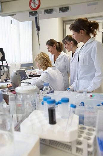 Stock Photo: 1566-347663 Laboratory, Fundación Inbiomed, Genetrix Group. Center for research in stem cells and regenerative medicine. Donostia, San Sebastian, Euskadi. Spain.