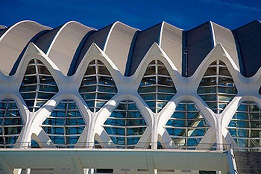 Museum of Science Príncipe Felipe, City of Arts and Sciences by S. Calatrava. Valencia. Comunidad Valenciana, Spain : Stock Photo