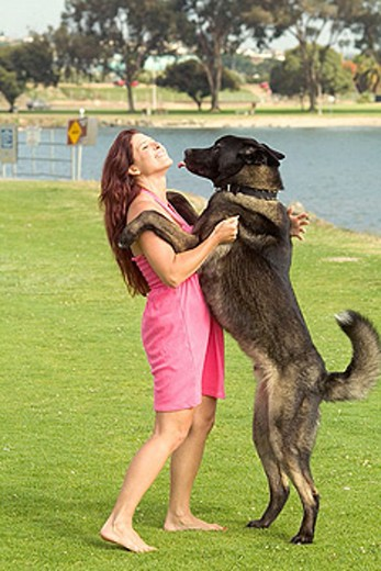 Stock Photo: 1566-354321 Woman gets a kiss from a large dog at park
