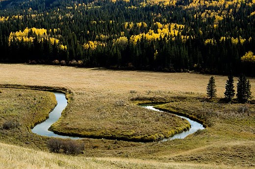 Stock Photo: 1566-357398 Battle Creek in Cypress Hills