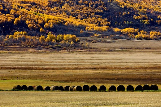 Qu´Appelle Valley agricultural scenic : Stock Photo