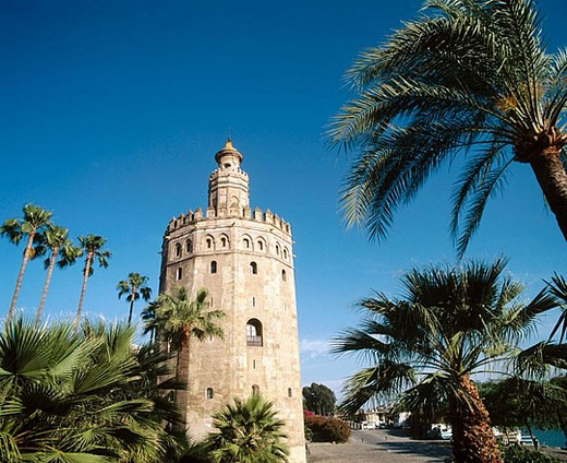 Torre del Oro, Sevilla. Andalucia. Spain. : Stock Photo