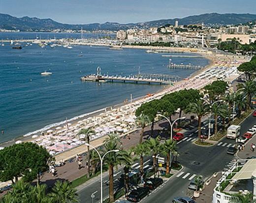 Stock Photo: 1566-364654 Boulevard de La Croisette. Cannes, Côte d´Azur. France