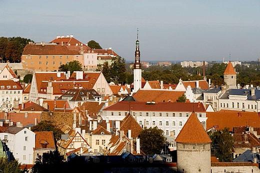 Old Town. Tallinn. Estonia. : Stock Photo