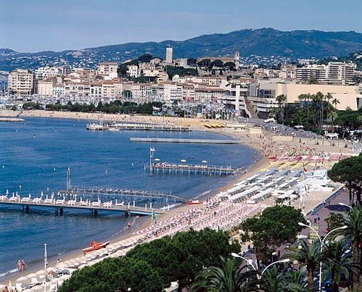 Boulevard de La Croisette. Cannes, Côte d´Azur. France : Stock Photo